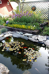 How Much Does It Cost To Install A Backyard Garden Pond