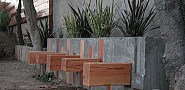 A greywater garden by Jeremy Levine Design via Flickr