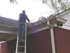 On the ladder, fixing the roof