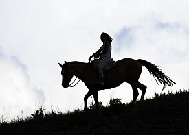 Note: we recommend wearing a helmet while horseback riding! Photo: David/Flickr