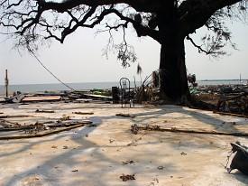 Photo: msand39/morguefile.com