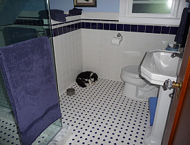 Photo of a beautiful new black and white tile floor by lavenderstreak/flickr.