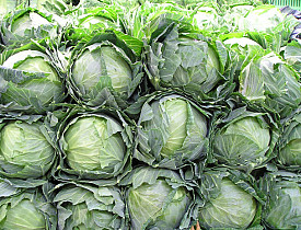 Photo of cabbages by Kenny123/morguefile.com.