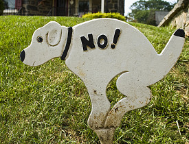 No pooping!