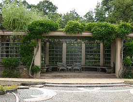 A garden trellis at Dumbarton Oaks. Photo by Erica Glasener.