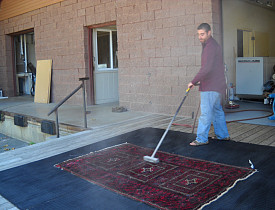 Cleary dusting the carpet.  Photo: Cris Carl