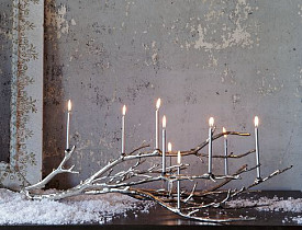 The West Elm Manzanita Candelabra via Westelm.com