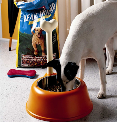 The Alessi Lupita Dog Bowl via Hive Modern