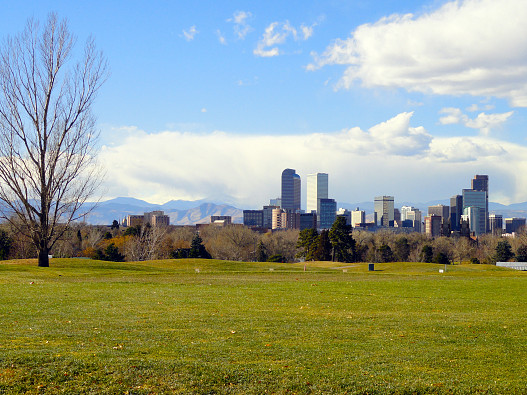 The skyline of Denver. Watch out for pests. (Photo: manisi/sxc.hu)
